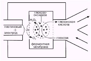 Принцип работы электрохимического глюкометра