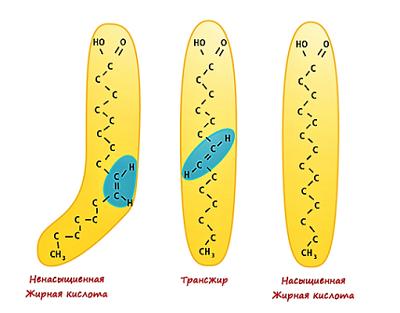 Молекулы жирных кислот и трансжира