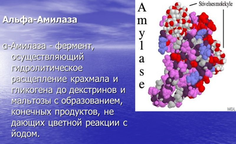 Альфа-Амилаза
