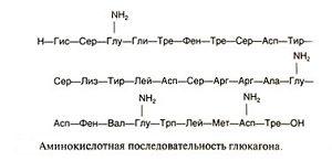 Аминокислоты глюкагона