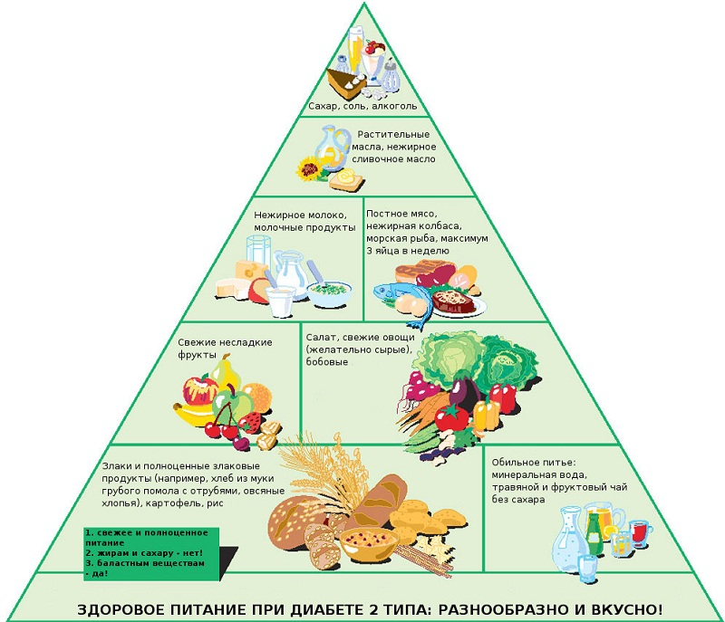 Пищевая пирамида
