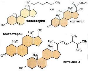 Формулы холестерина, тестостерона, кортизола