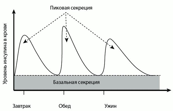 График уровня инсулина в крови