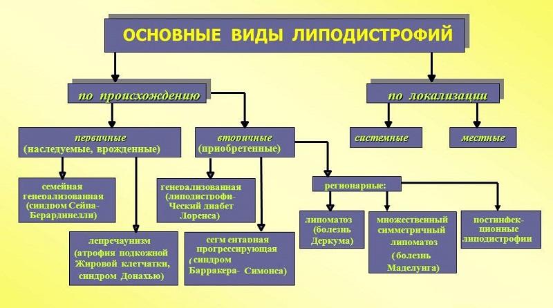 Основные виды липодистрофии